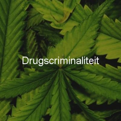 Drugscriminaliteit